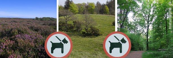 Ifølge naturbeskyttelsesloven skal hunde føres i snor i skov og udyrkede naturarealer som f.eks. heder, moser og enge.