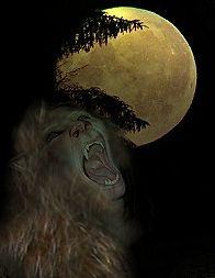 Tidligere tiders tro på varulve var også under påvirkning af månen. En varulv blev forvandlet ved fuldmåne.