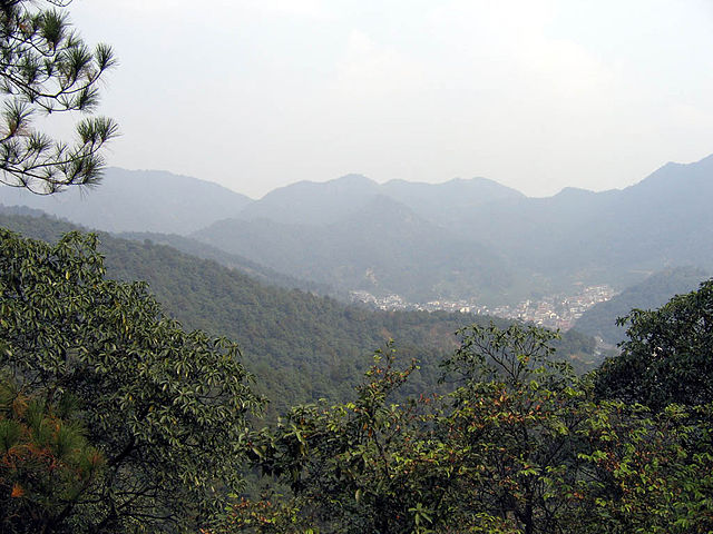 Den kinesiske stat har siden 1999 givet tilskud til at plante skov på tidligere landbrugsjord. Det er foreløbig blevet til 28 millioner hektar plantet skov. Foto: Jacob Ehnmark CC BY 2,0, Wikimedia