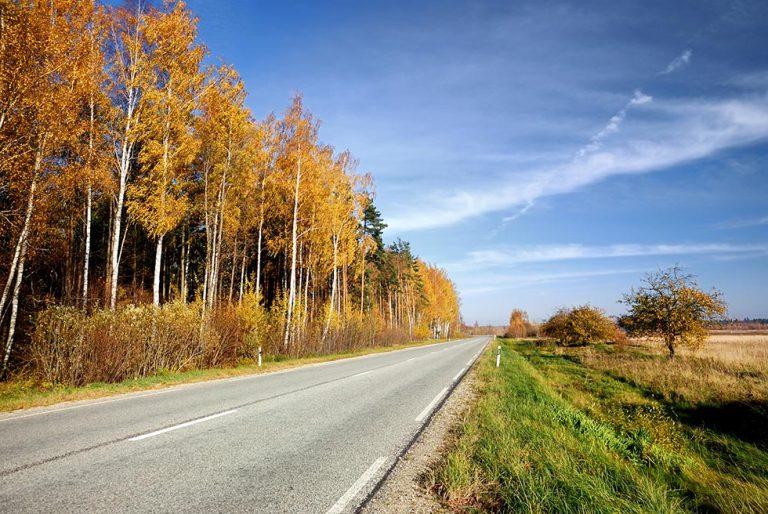 Nyt miljø- og naturvenligt alternativ til vejsalt!