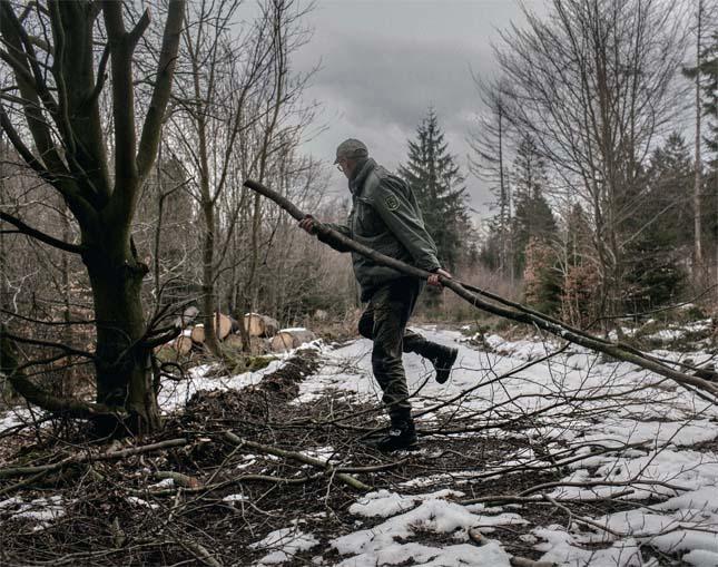 Skovfoged i skoven. Foto: Miriam Dalsgaard, Polfoto