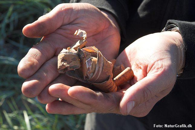 Strimler af birkebark er fint til optænding af bål.