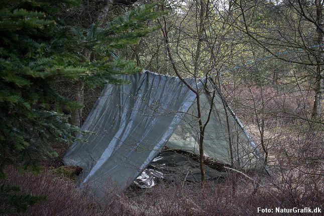Bivuaken laves ved at spænde en vandtæt presenning over et reb, der er bundet mellem to træer.