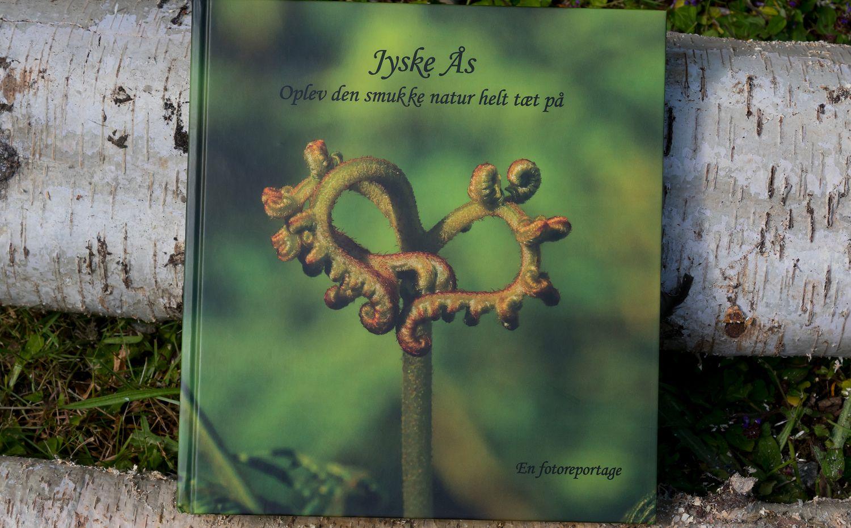 Jyske Ås - NaturGuide.dk - natur og...