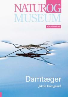 damtaeger_bog