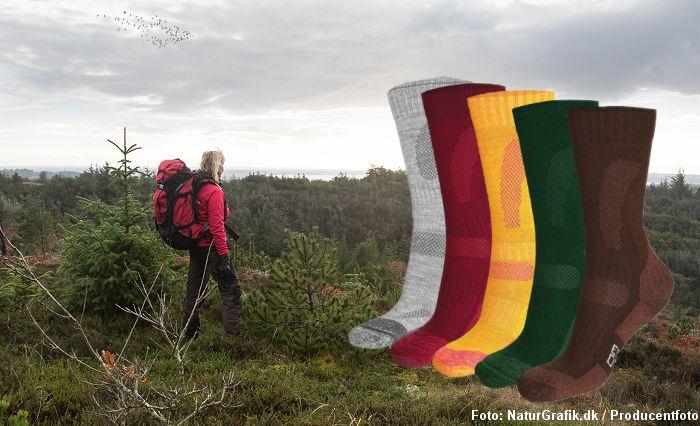 Test af vandresokker fra Danish Endurance