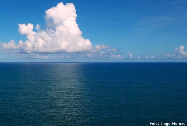 Havets dyb rummer måske uudnyttet biomasse, der kan bruges til menneskeføde. Foto: Tiago Fioreze, CC BY-SA 3.0, Wikipedia.