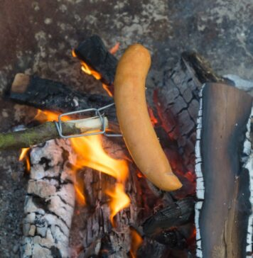 test firefork grillspyd