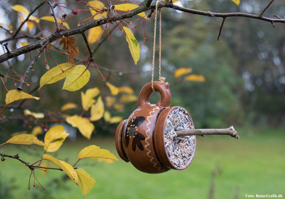 Mangler du en god ide i efterårsferien? Lav en fedtkop til fuglene sammen med børnene.