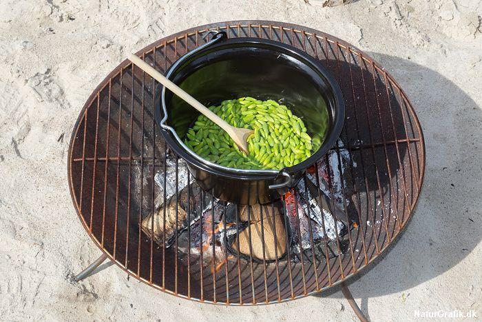 Vi tilbereder helst granskuddene over bål, men et komfur kan selvfølgelig også bruges.