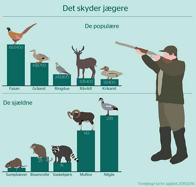 Foreløbige tal for jagtsæsonen 2015/2016. Nedlagt. DCE, Aarhus Universitet har netop offentliggjort den foreløbige jagtstatistik. Grafik: SVANA