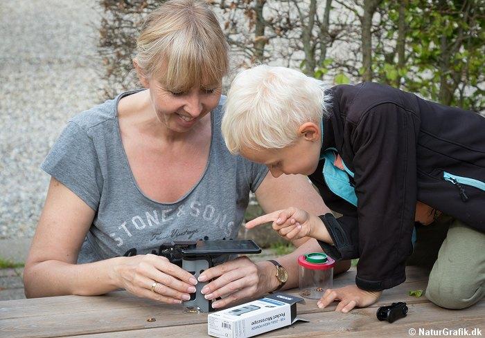 Vi tester om et lommemikroskop til under 200 kr. reelt kan bruges til noget.