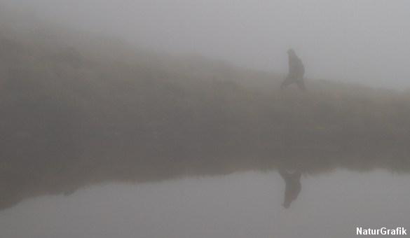 Faret vild i bjergene i den tætte tåge.
