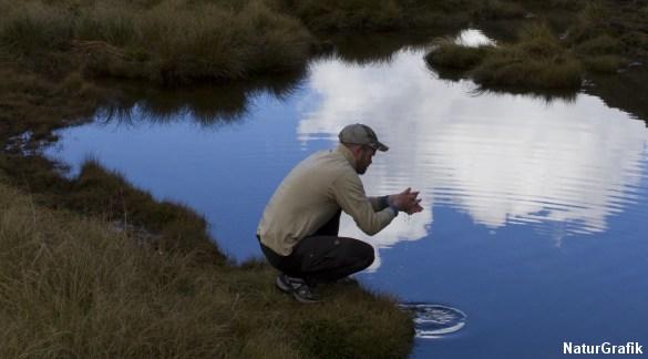 Adgang til vand er livsvigtig for overlevelse i vildmarken.