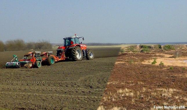 Beskyttede naturområder forsvinder fra Danmark ved opdyrkning eller bebyggelse, hævder Naturstyrelsen.