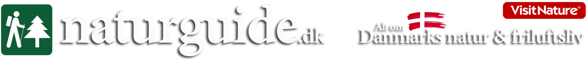Naturguiden - Danmarks natur og friluftsliv