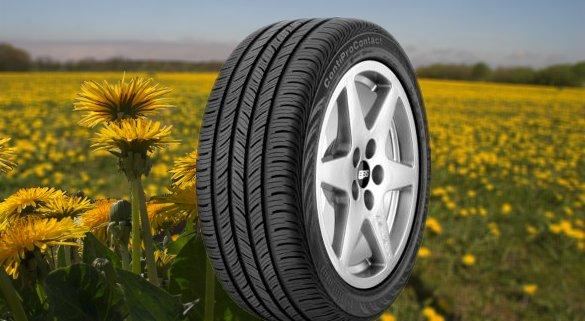 Mælkebøtter kan producere naturgummi i høj kvalitet bl.a. til bildæk.