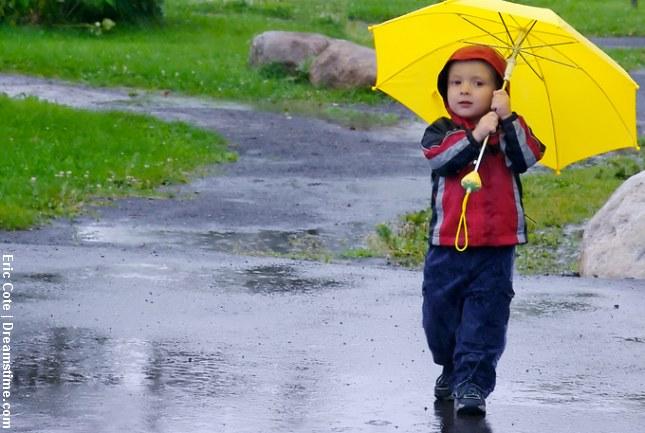 Stigende mængder sprøjtegift i vores regnvand