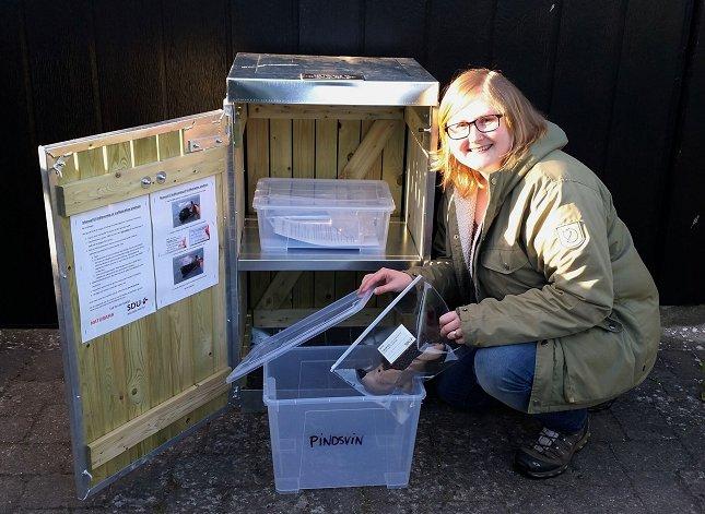 På indsamlingsstationernestår der en stander, der indeholder nærmere vejledning om, hvad man skal notere sammen med det døde pindsvin. Foto: Sophie Lund Rasmussen.