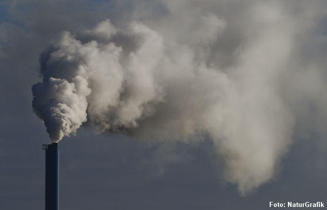 En række centrale grønne målsætninger vedrørende CO2-reduktionen, vedvarende energi, udfasning af kul i kraftværker og mindskning af luftforurening skal reduceres, ifølge notater fra Venstre-regeringen.
