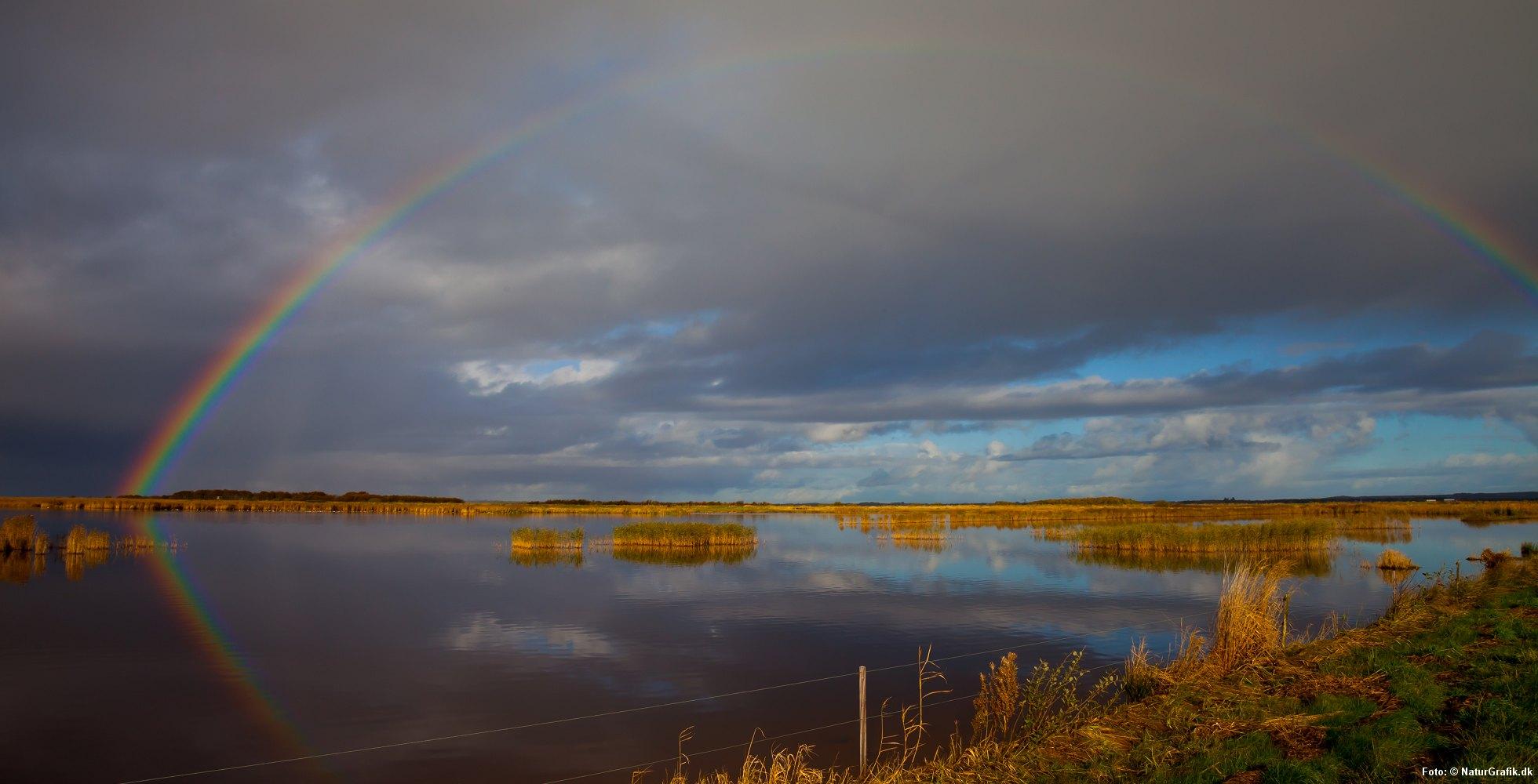 Regnbuen - bifrost
