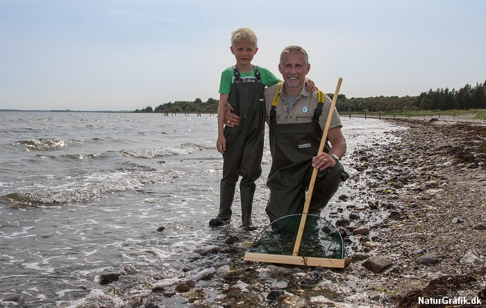 Fang rejer langs kysten med børnene