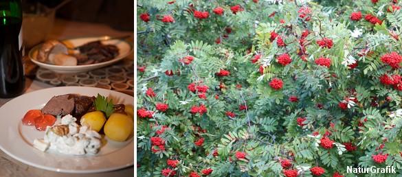 Rønnebærgele er skøn til alt fra rødt kød, forloren hare til vildretter og ost.
