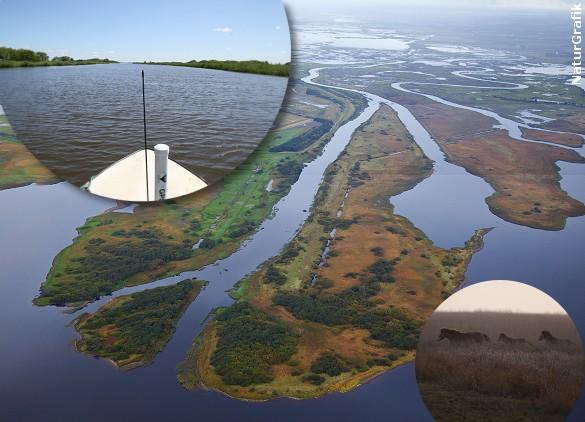 Skjern Å er Danmarks vandrigeste å og den firearmede udmunding betegnes som Danmarks eneste floddelta.