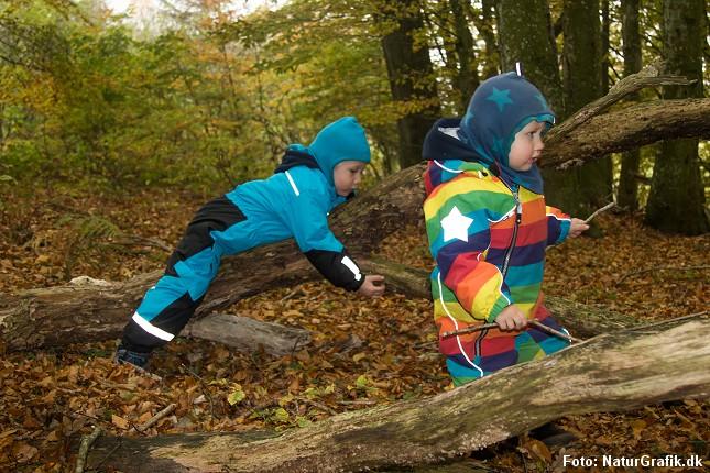 Danske naturbørnehaver er blevet populære - og der er interesse fra udlandet.