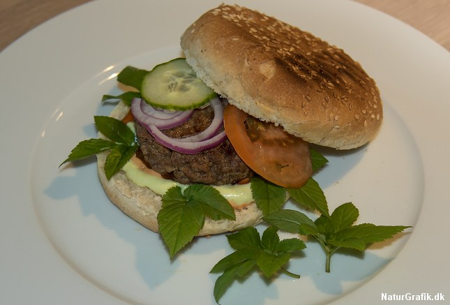 "En hjemmelavet ""skvalder-burger"""