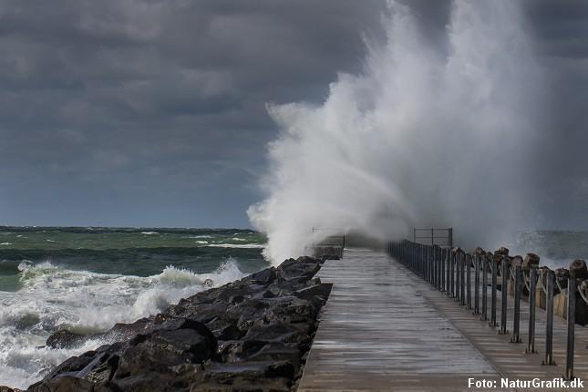storm_vestkystmole