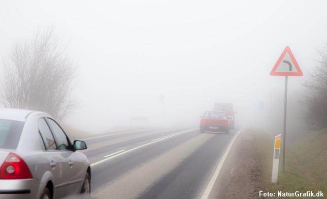 Forårstågen kan være generende i trafikken.