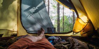 Fri teltning i 275 skove