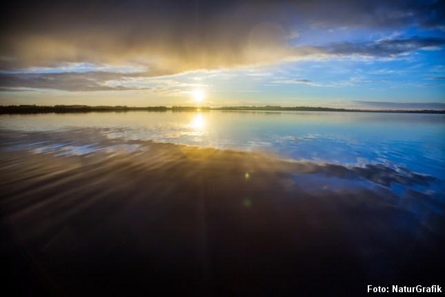 Tømmerby Fjord er trods navnet en sø - og tilmed Nordjyllands største. Søen er en del af reservatet Vejlerne.