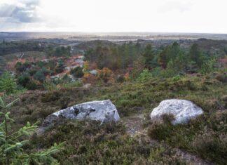 Nordjylland rummer Danmarks vildeste natur
