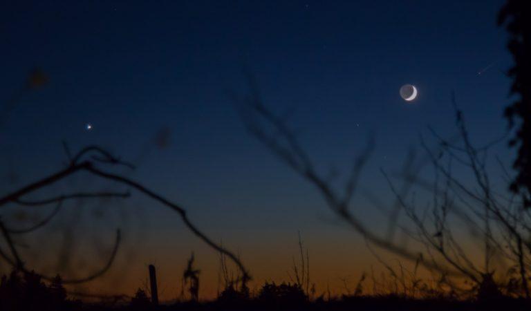Venus – decembers klare ledestjerne
