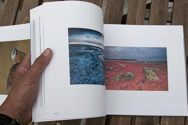 Bogen Vingesus er en flot hyldest til naturen ved Vejlerne.