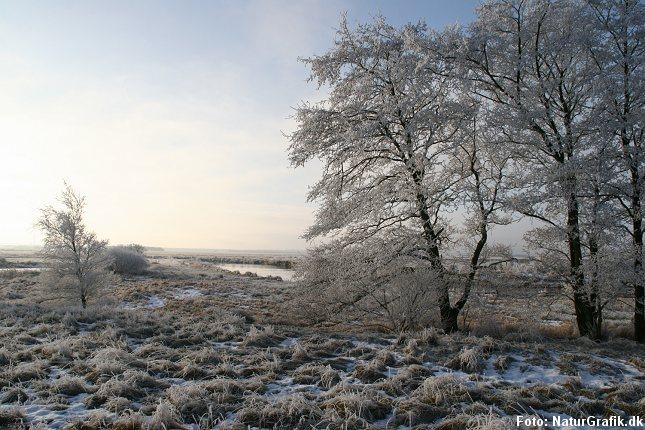 vinter_land
