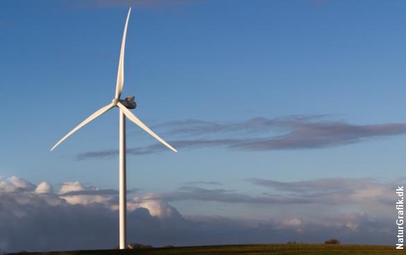 Verdens største vindmølle er på vej til Thy, hvor den skal opstilles i testcentret ved Østerild Plantage. Arkivfoto.